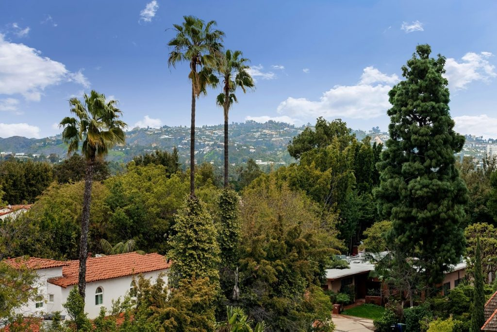 Hotel Photos - Patio view